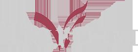 trifium-logo-navbar
